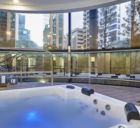 The Spa at Renaissance - Hot Tub